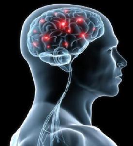 Neurologie I